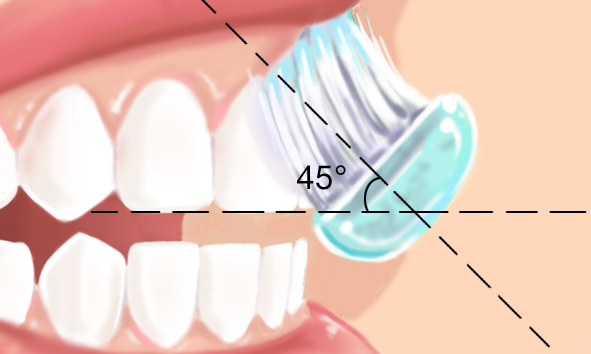 Technique brossage des dents  2